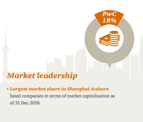 PwC CN: IPO and capital markets services